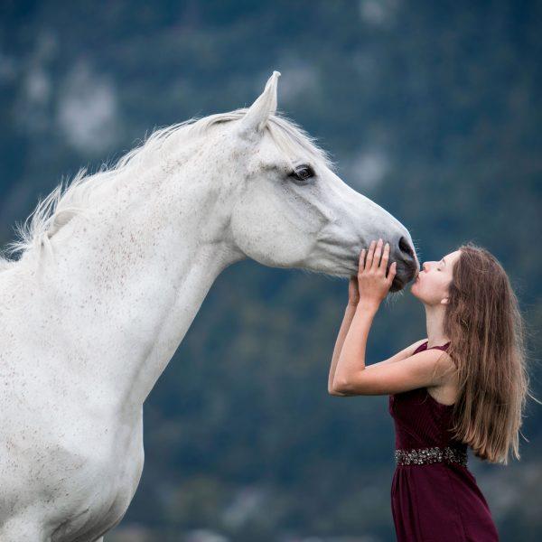 Arabisch volbloed paardenfotografie fotoreis