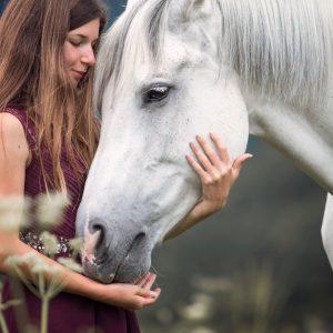 Arabisch volbloed fotoreis paarden fotografie
